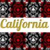 Shirt & Leggings CALIFORNIA ☆Flame☆ АРТ 203(0)