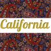 Shirt & Leggings CALIFORNIA ☆ Paisley Dream ☆ АРТ 201(0)