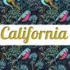 Top Gray & Leggings CALIFORNIA ☆Green Forest☆ АРТ 220(0)