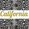 Top White & Leggings CALIFORNIA ☆White Snake☆ АРТ 208(0)