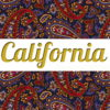 Shirt & Leggings CALIFORNIA ☆ Paisley Dream ☆ АРТ 201(0)