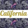 Top Gray & Leggings CALIFORNIA ☆Forest☆ АРТ 219(0)