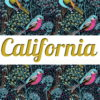 Top Gray & Leggings CALIFORNIA ☆Green Forest☆ АРТ 220(0)