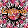 Top & Leggings CALIFORNIA АРТ 0114 Orchid (0)